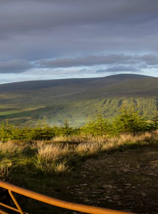 The Land of Wicklow, co. Wicklow, IR, June 2015.